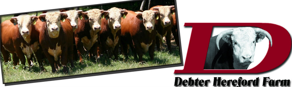 debter hereford farm banner3